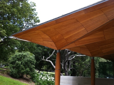 Roof canopy